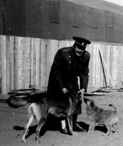 Комбат Володя Мерзлов - любитель собак, у строящегося клуба в первом полевом городке в Айраге.1982 год.