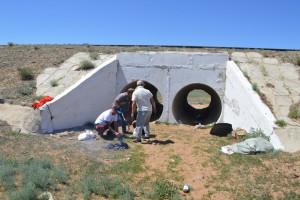Вот как это было: как летом этого, 2015 года с моими молодыми монгольскими друзьями под Борундуром: где ещё посидеть и закусить в тени в Гоби? Конечно, в водопропускной трубе... Фото Цагандая.
