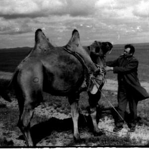 Зам. по снабжению капитан Федя Гуцуляк - лучший друг всех монгольских верблюдов...