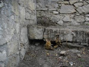 Удалены, наконец, деревья, разрушавшие древнюю кладку храма.